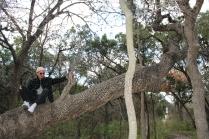 Austin_Tree Pose